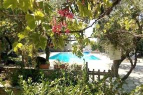 Saily Hotel Pelion